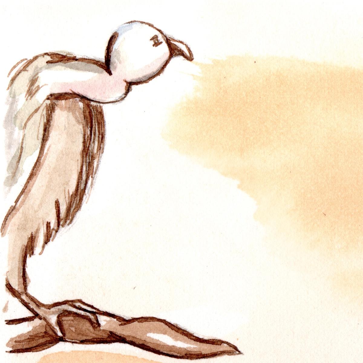 Camino détail - illustration - Caroline Dewaele - cAro igano