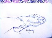 Feetbruary27